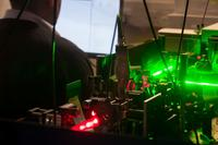Quantum researchers find hallmarks of entanglement in bacteria experiment